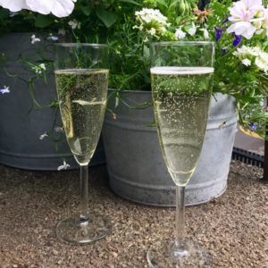I've been offered representation by my top choice of literary agent and we're opening the champagne to celebrate!